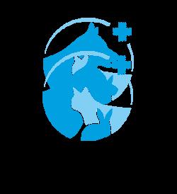 Accueil de la clinique vétérinaire des Passages