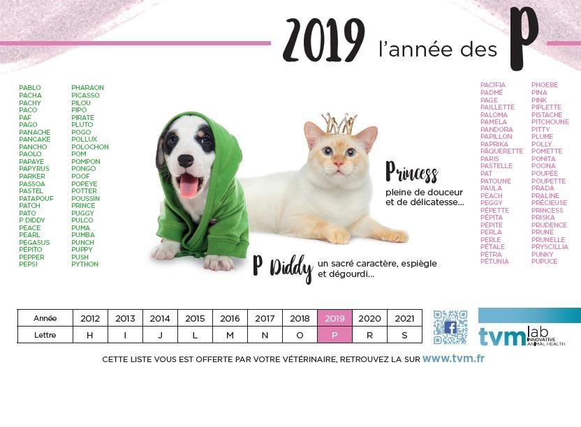 quelle lettre pour les chiens en 2019